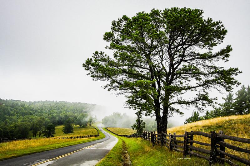Parkway Mist