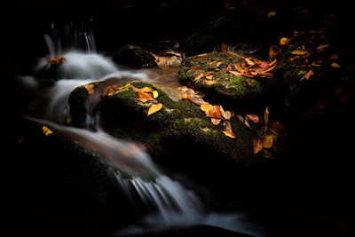 There are some spots on the Parkway that I never tire of stopping to see. One being Boone Fork near Grandfather Mountain. As popular an area as it is, I seem to have the place to myself most of the time. This image of mossy rocks, autumn leaves and cascading waters was made during one of my recent visits this fall.