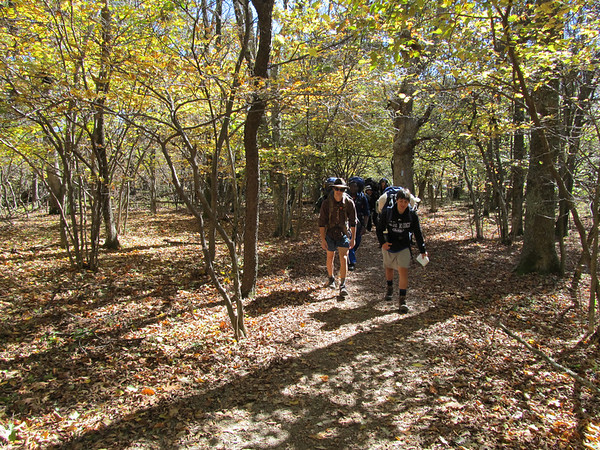 Appalachian Trail Overnight