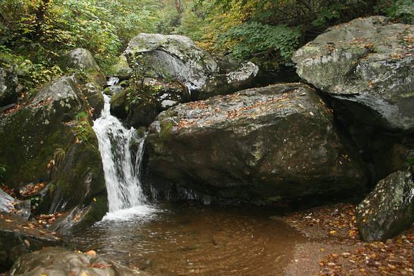 Outdoor Education: Dark Hollow Falls, Oct. 2