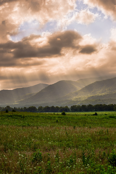 Sun Rays in Cade's Cove