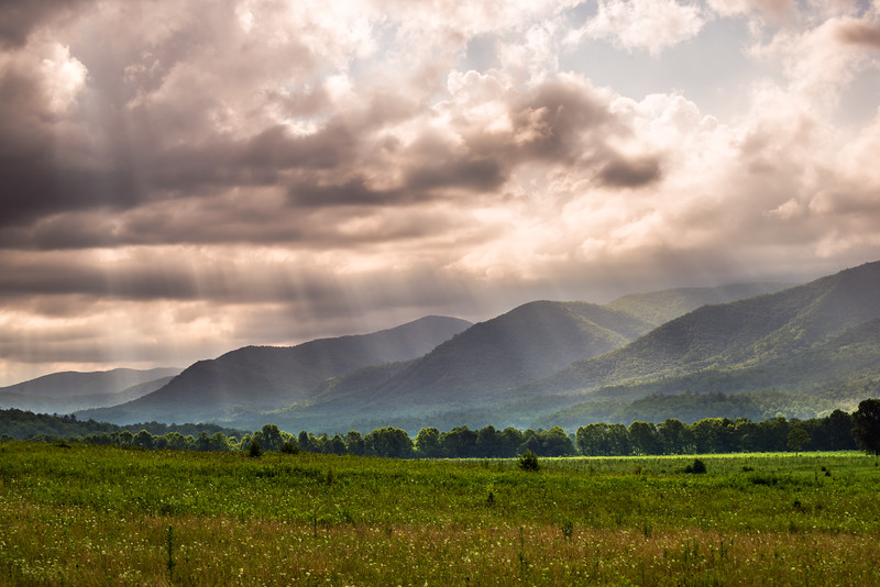Morning Light in Cade's Cove
