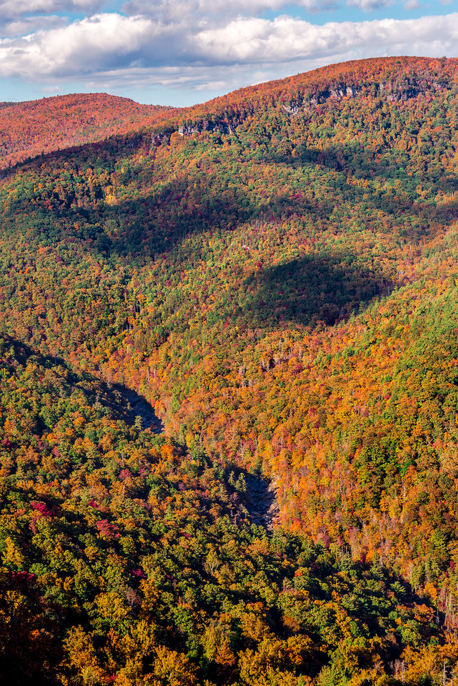 Fall Color From Wiseman's View