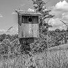 Birdhouse on the Blue Ridge