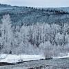 Stilly Winter Landscape