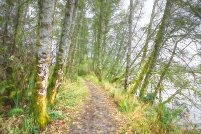 Early Fall River Hike