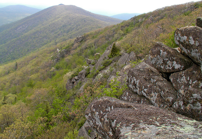 Looking north from Hawksbill Mountain, Shenandoah National Park