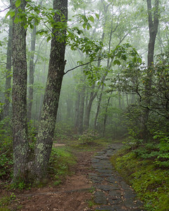 Path to a picnic area off the Blue Ridge Parkway
