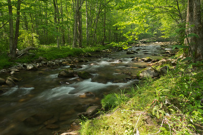 Bradley Fork, along the Smokemont Loop trail, in Great Smokey Mountains National Park
