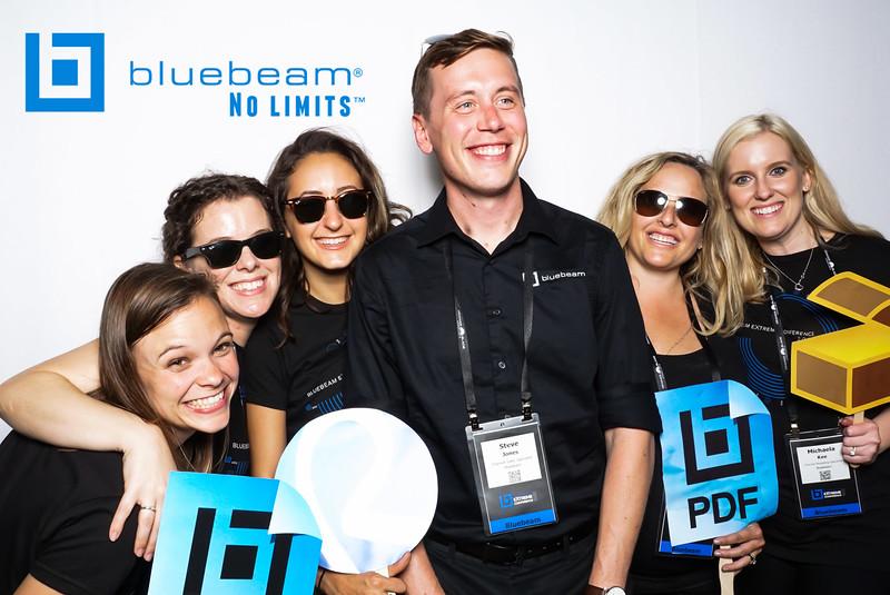 Bluebeam Software
