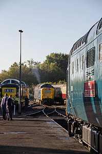 D9002 'The King's Own Yorkshire Light Infantry', D9009 'Alycidon' and 55019 'Royal Highland Fusilier' at Sheffield Park
