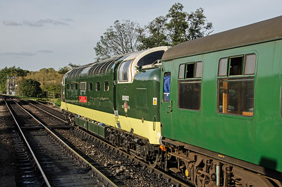 D9002 'The King's Own Yorkshire Light Infantry' at Sheffield Park