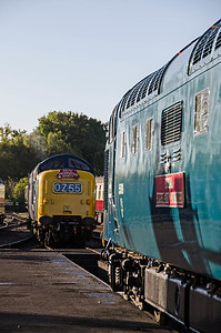 D9009 'Alycidon' and 55019 'Royal Highland Fusilier' at Sheffield Park