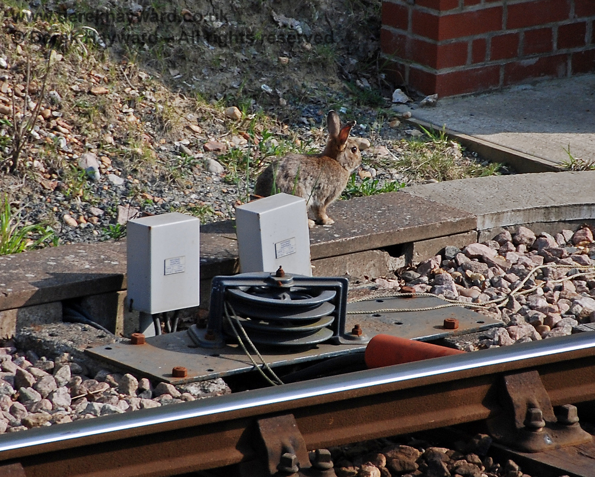 New staff have been recruited to help S&T check remote equipment. Horsted Keynes 14.04.2007