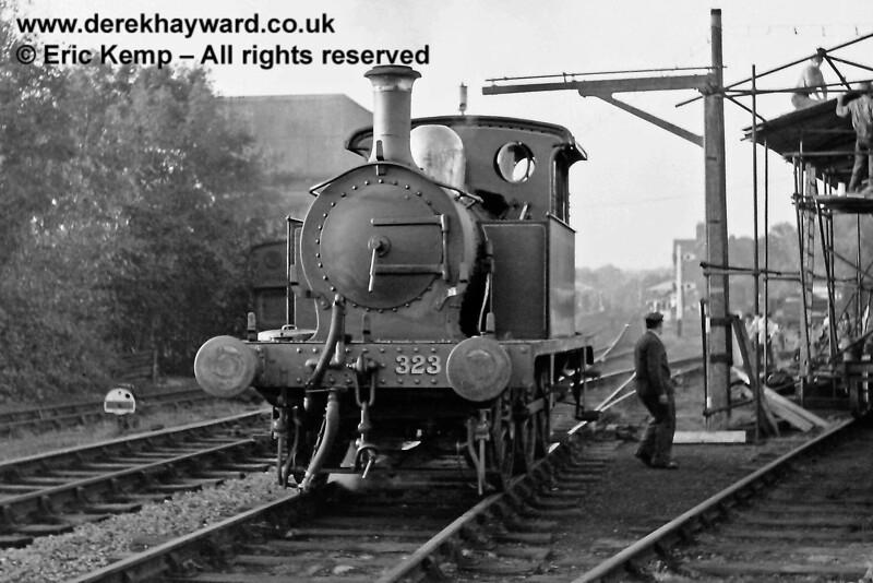 Bluebell at Sheffield Park.  05.10.1969