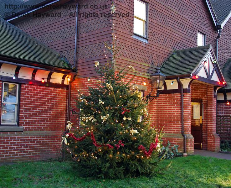The Christmas tree at Sheffield Park. 06.12.2008