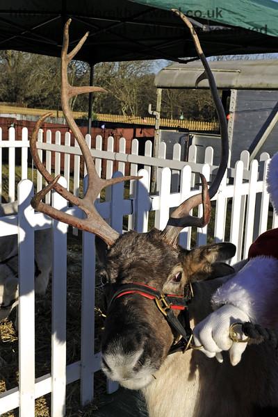 Christmas at the Bluebell Railway.  Kingscote 13.12.2014  10193