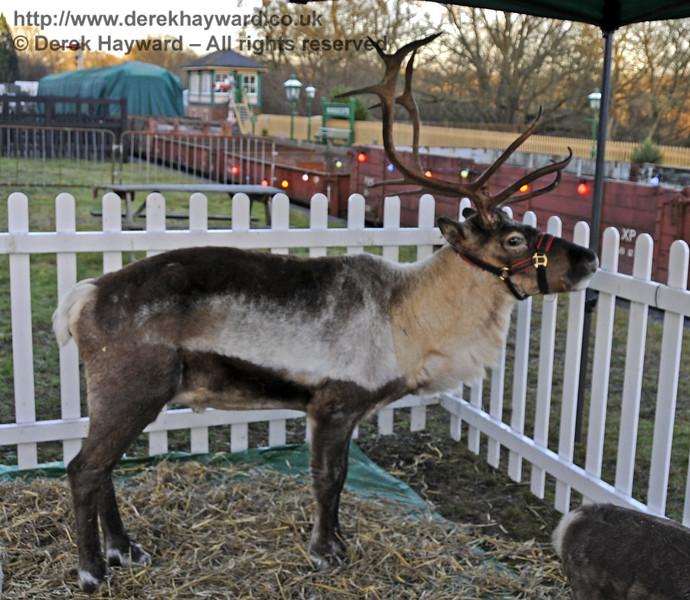 Christmas at the Bluebell Railway.  Kingscote 13.12.2014  11800