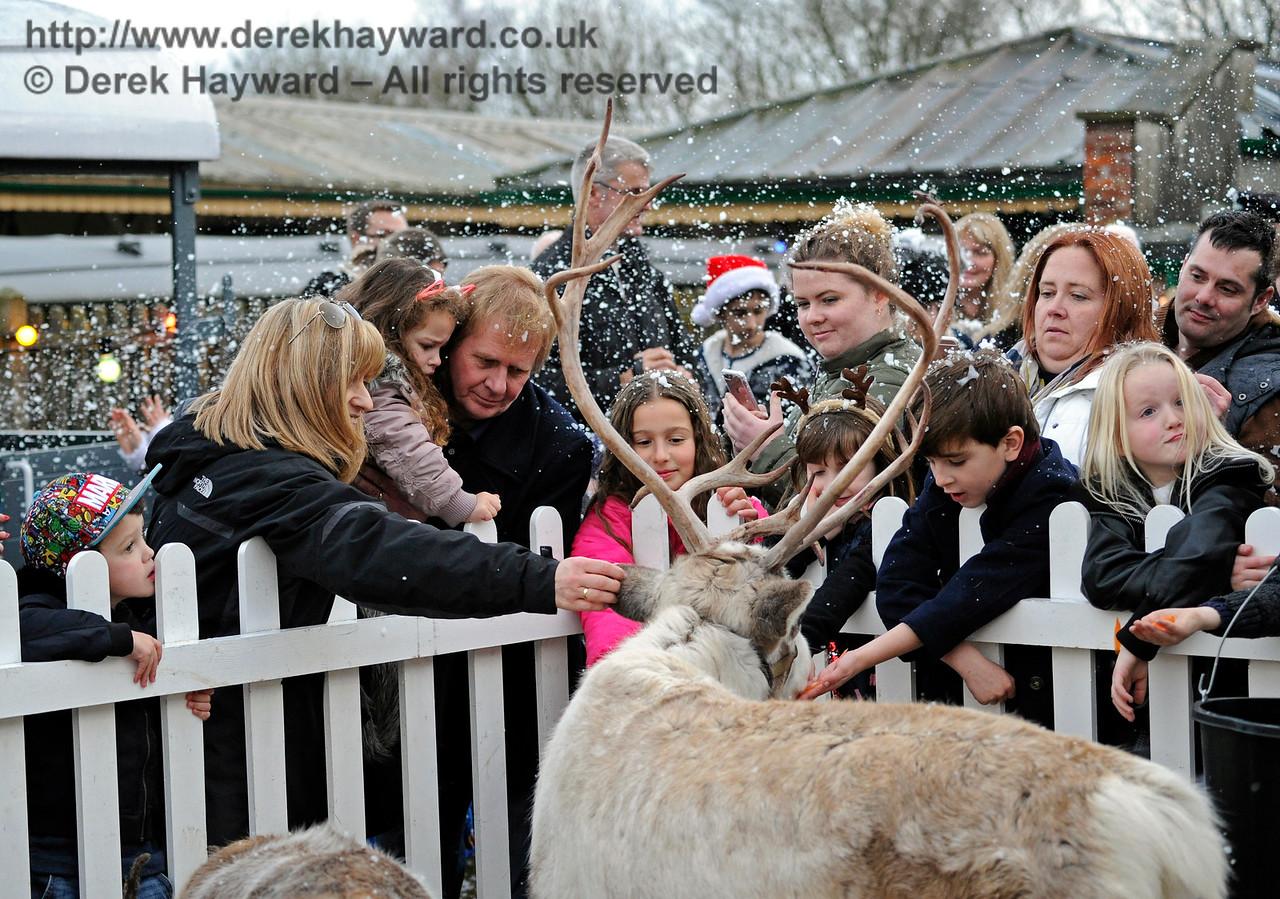 Reindeer KC 111216 14662 E
