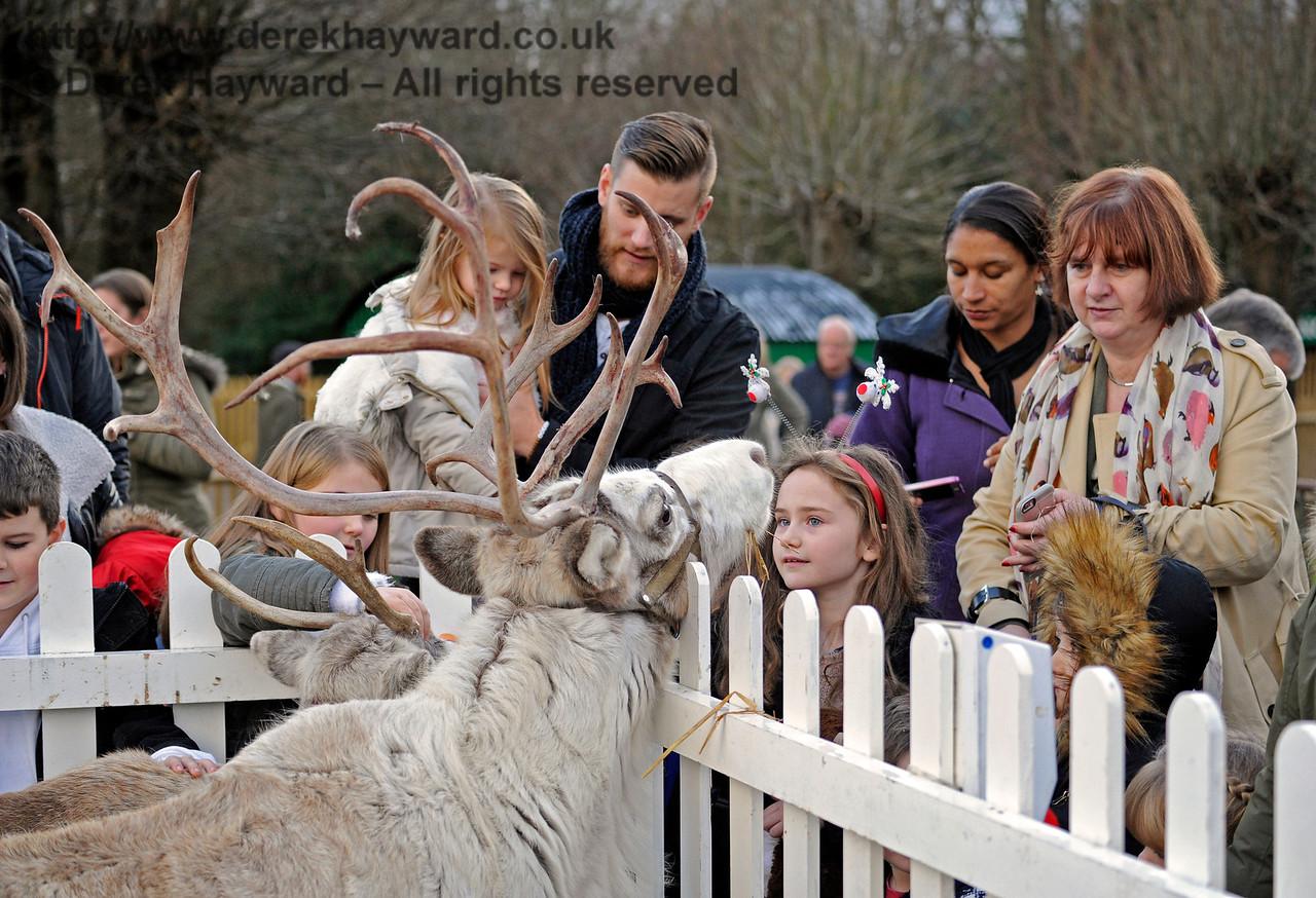 Reindeer KC 112116 14655 E