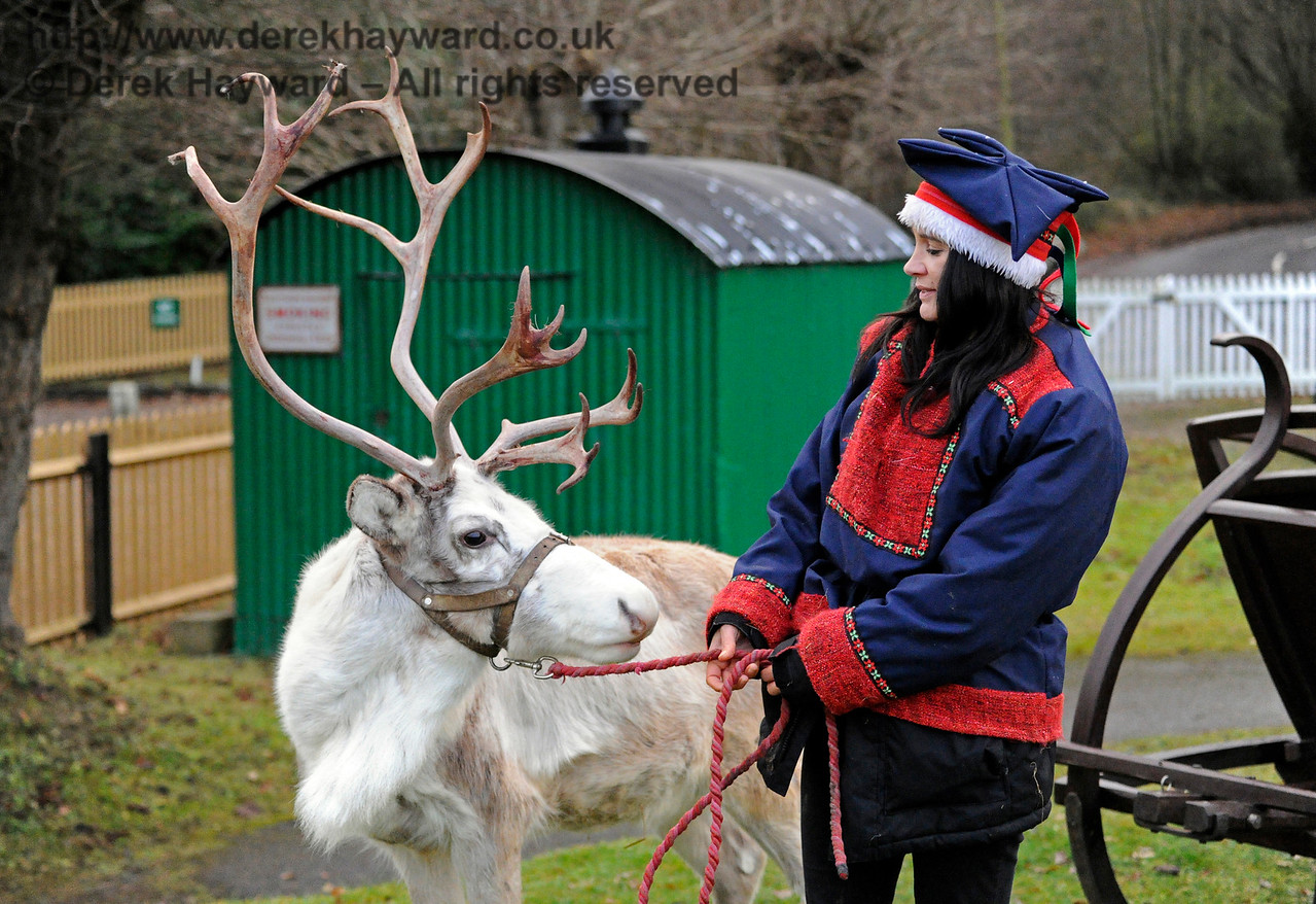 Reindeer KC 111216 14673 E