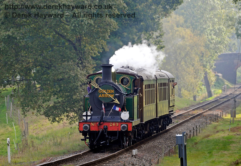 263 steams north through Mill Place cutting with the Golden Arrow.  04.10.2015   12005