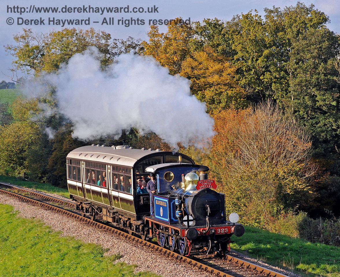 323 Bluebell approaches Rock Cutting with an Autumn Tints train.  20.10.2015  12291