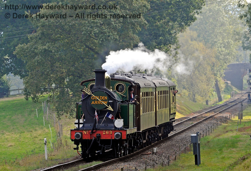 263 steams north out of Mill Place cutting with the Golden Arrow.  04.10.2015   12006