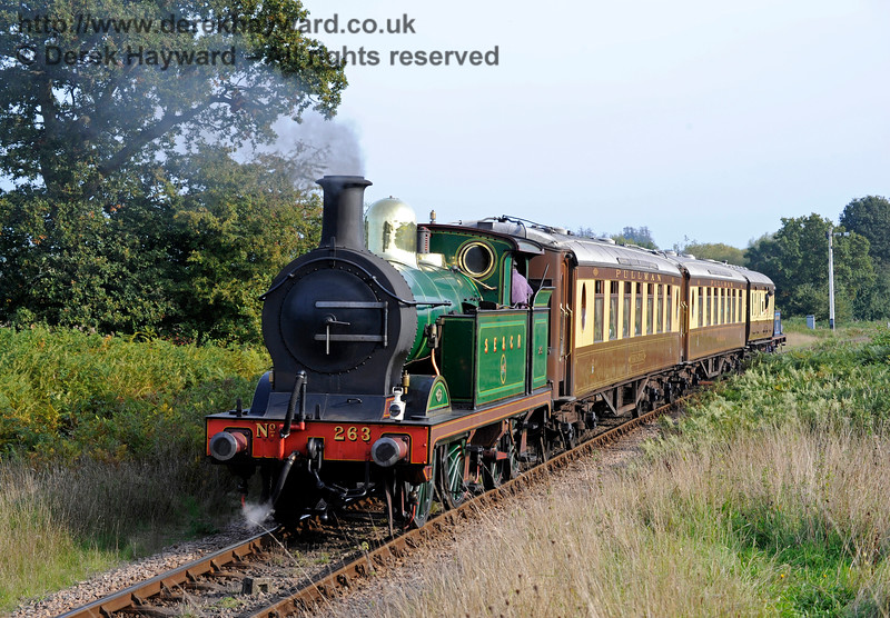 263 brings up the rear of the Golden Arrow as it returns to Sheffield Park from Horsted Keynes.  04.10.2015   12059
