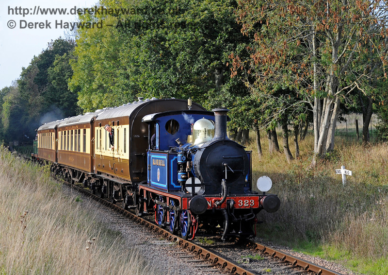 323 Bluebell steams south through Ketches Halt with the Golden Arrow.  04.10.2015   12058