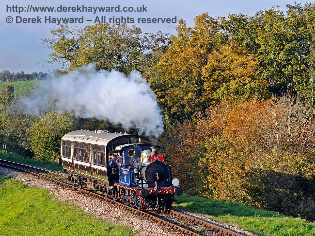 323 Bluebell approaches Rock Cutting with an Autumn Tints train.  20.10.2015  12289