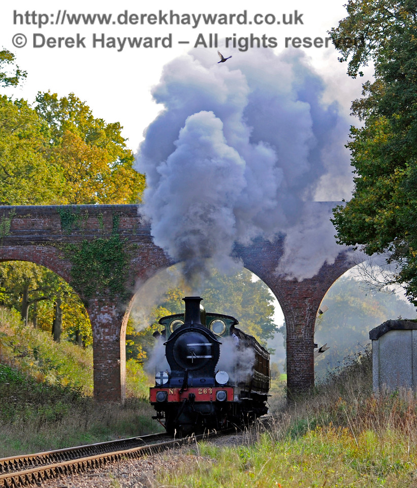 263 passes under Three Arch Bridge.  A pheasant, flying past, flaps it's wings furiously to get out of the plume of steam (look at the top of the cloud of steam).  25.10.2015  12325  (I had steam cooked pheasant with carrots and peas for dinner....)