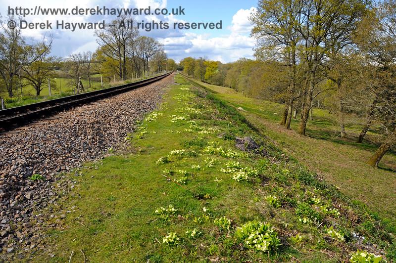 Springtime on the track north of Leamland Bridge.  30.04.2016  15035