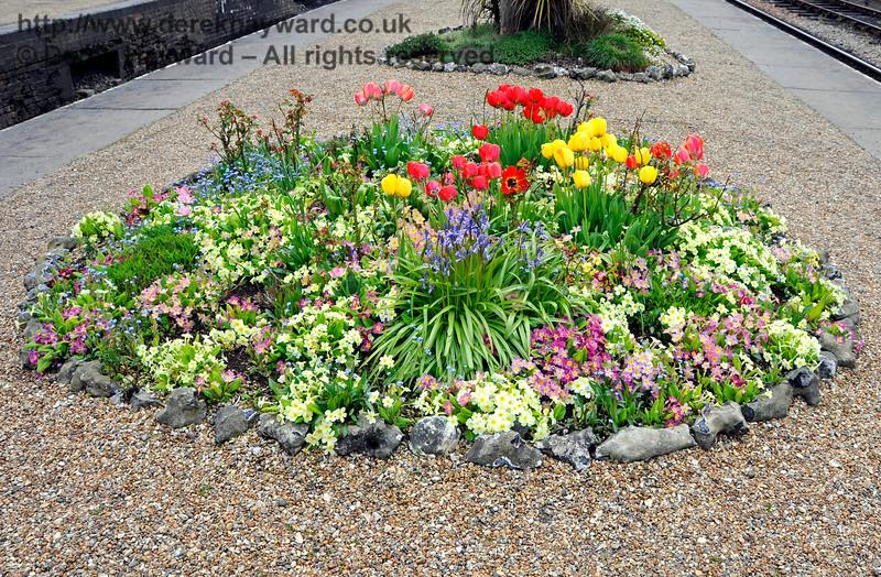 Flowers at Horsted Keynes.  30.04.2016  15001