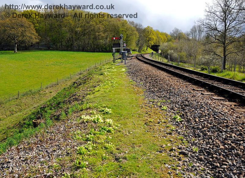 Springtime on the track north of Leamland Bridge.  30.04.2016  15036