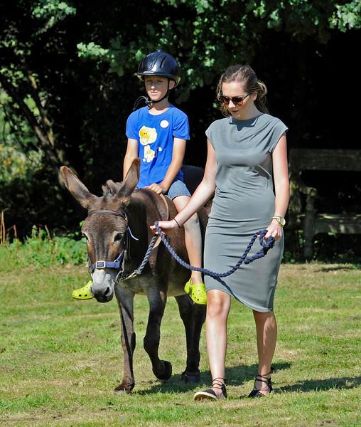 Donkey Rides HK 060816 13714 E
