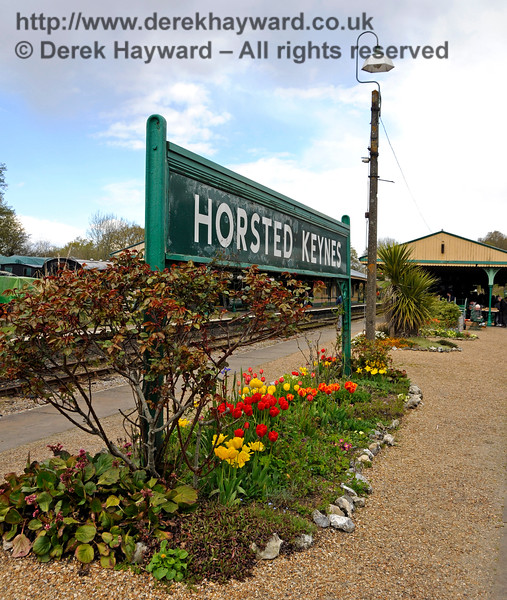 Flowers at Horsted Keynes.  30.04.2016  15007