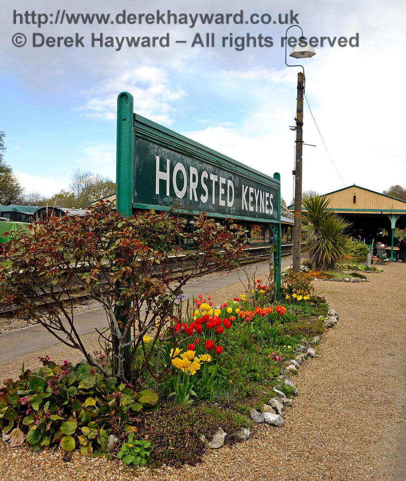 Flowers at Horsted Keynes.  30.04.2016  15007