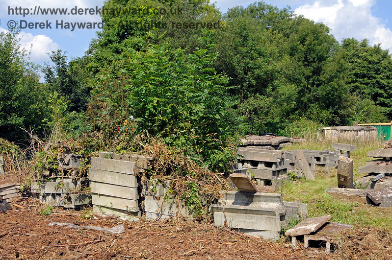 Concrete troughs awaiting sorting at West Hoathly.  Some of them had been left there for some time, hence the encroaching undergrowth.  West Hoathly   27.08.2017 17744