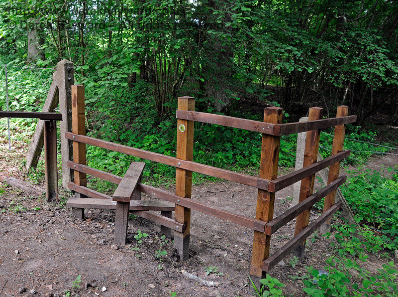 A new stile installed by the Friends of Kingscote  on the east side of the line at Birch Farm Crossing.  Note the dog friendly gap next to the stile. 110617 17348