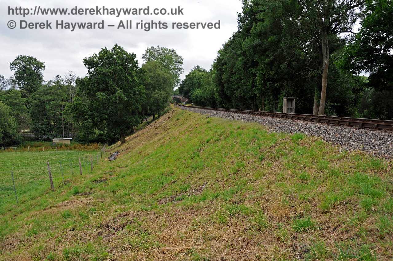 Mill Place Embankment, recently cleared by the Friends of Kingscote. 15.07.2017 17557