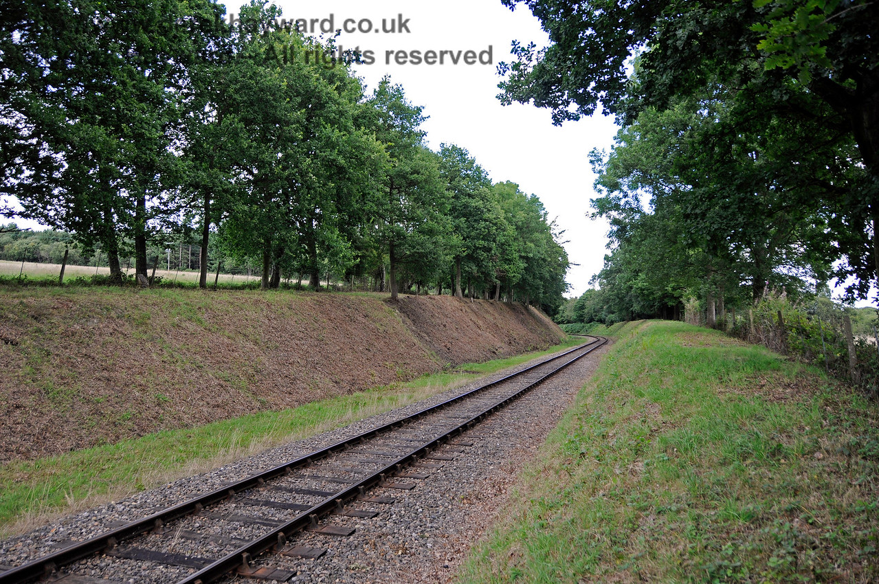 Recently completed lineside clearance north of Dean's Crossing.  In the very far distance the rain has caused ferns to spring up again to a height of almost two feet.  This kind of work is like painting the Forth Road Bridge. 06.08.2017 17602