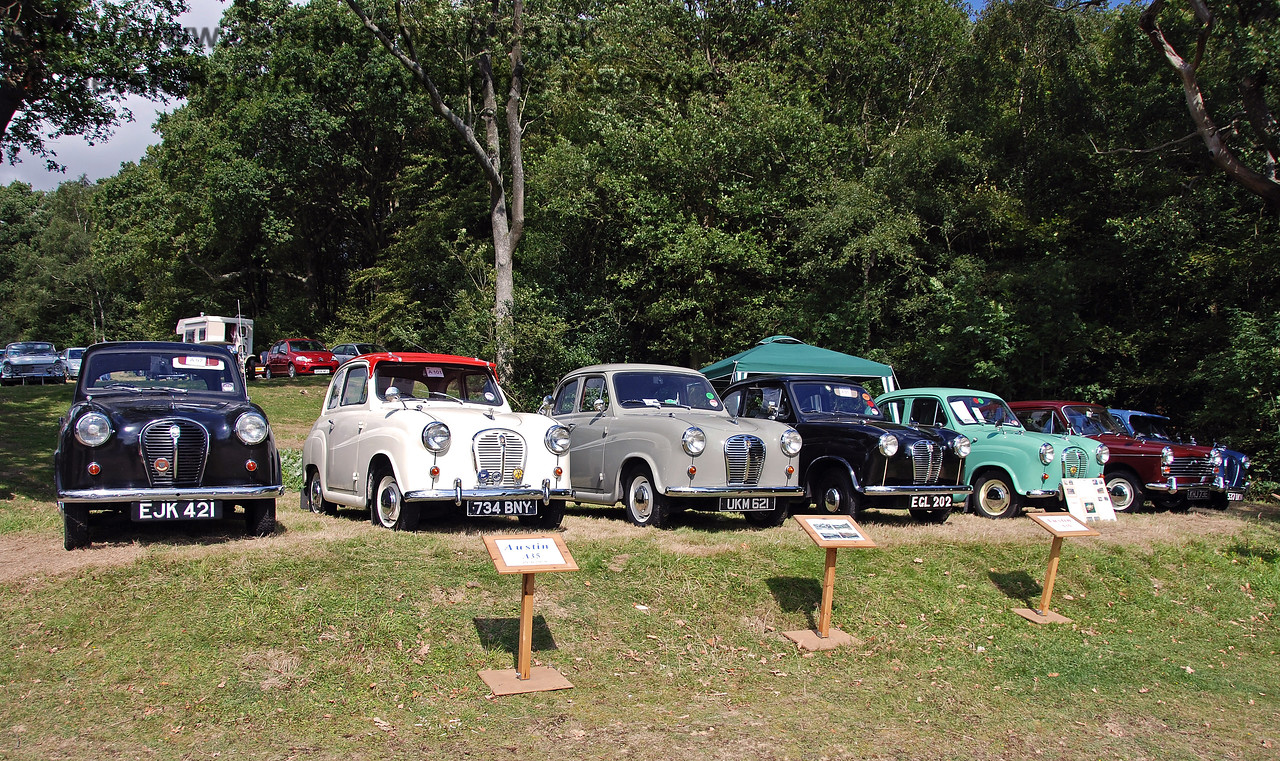 A display of Austin cars. Horsted Keynes 12.08.2007