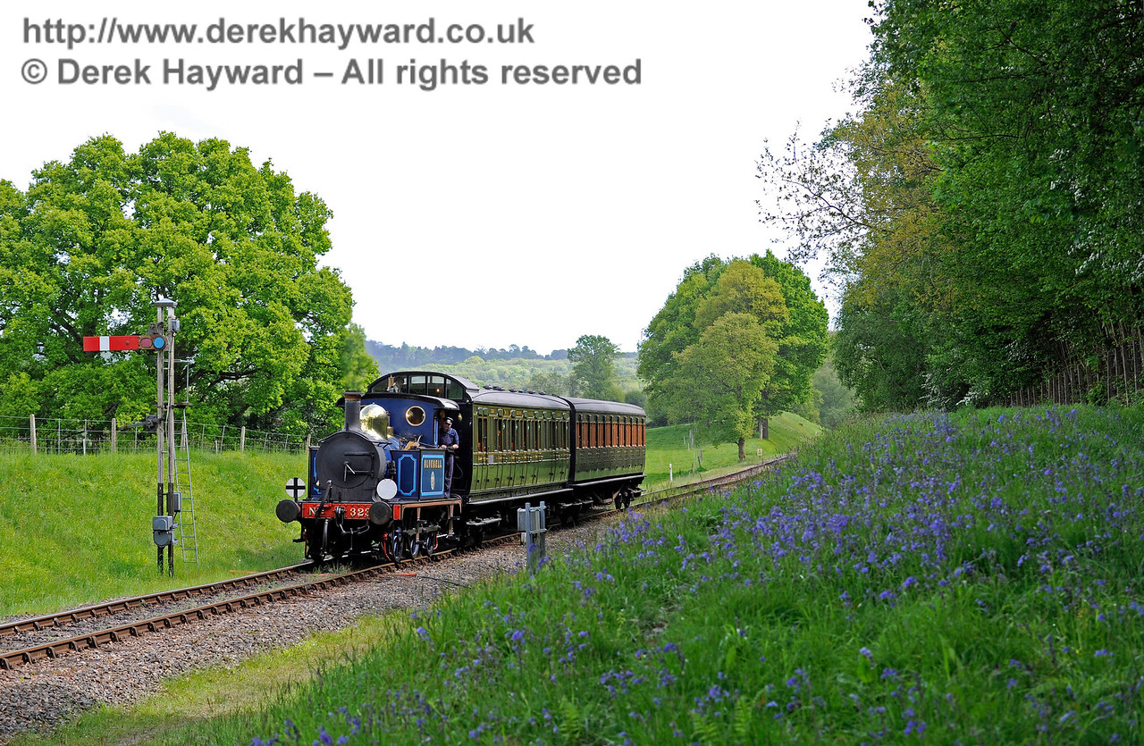 323 Bluebell amongst the bluebells as it approaches Kingscote.  14.05.2017 15275