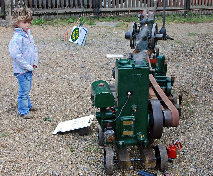 Stationary engines can be fascinating. Horsted Keynes 20.10.2007
