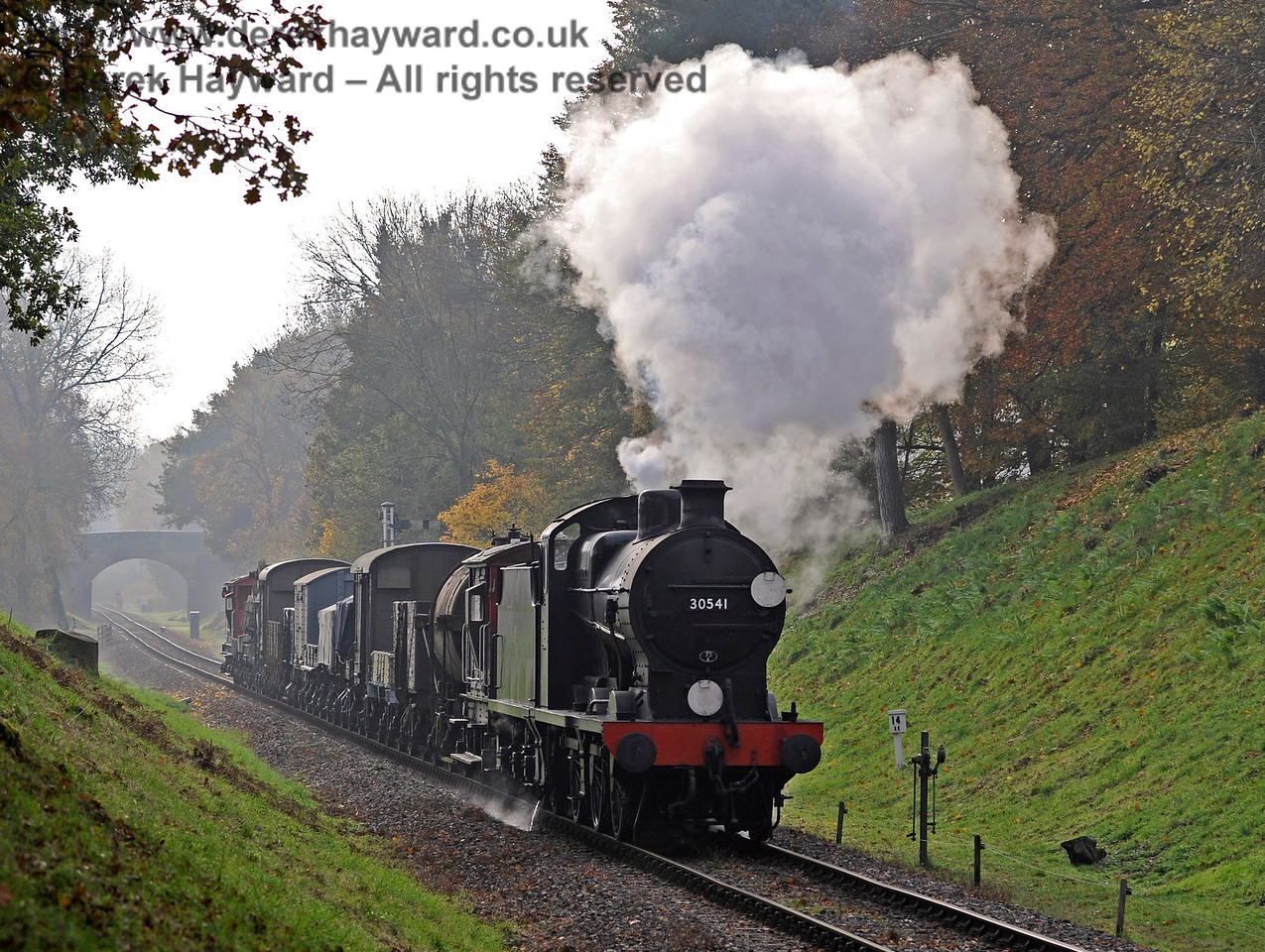 30541 ambles through Mill Place cutting with an early morning goods train.  31.10.2015  12358