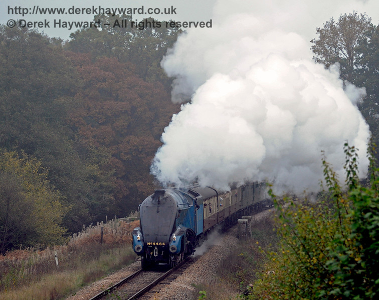 In rather misty conditions 4464 Bittern crosses Waterworks Bridge with one of the last trains.  01.11.2015  12498