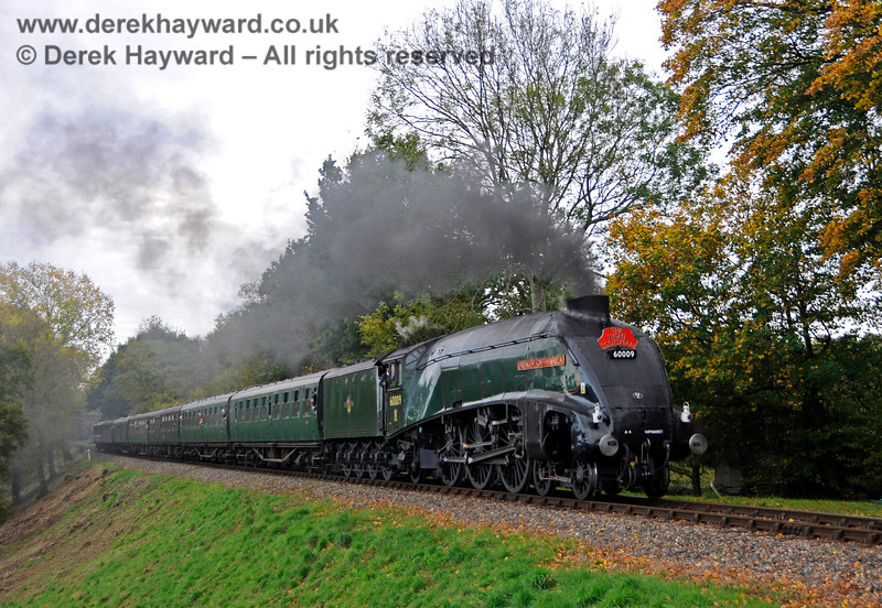60009 steams north from Mill Place Bridge 13.10.2018  18904