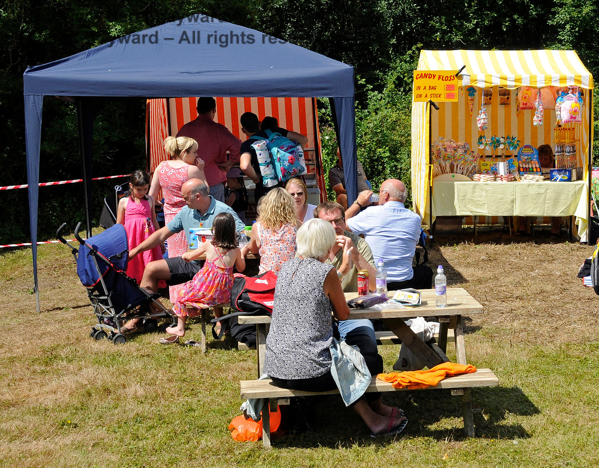 Some of the stalls at  Horsted Keynes  01.08.2015  13326