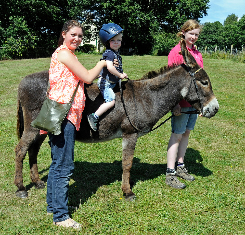Donkey rides were available for younger visitors.  Horsted Keynes  01.08.2015  13395